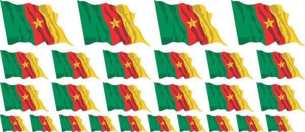 Mini Fahnen / Flaggen Kamerun